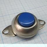 Кнопка большая голубая